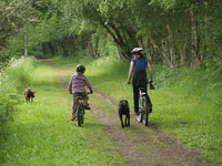 Churnet Valley Cycle Path